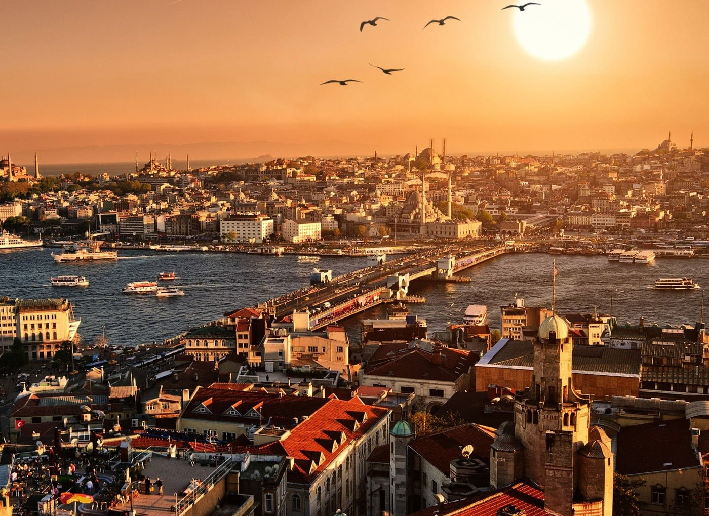 About will Istanbul escorted tours topic